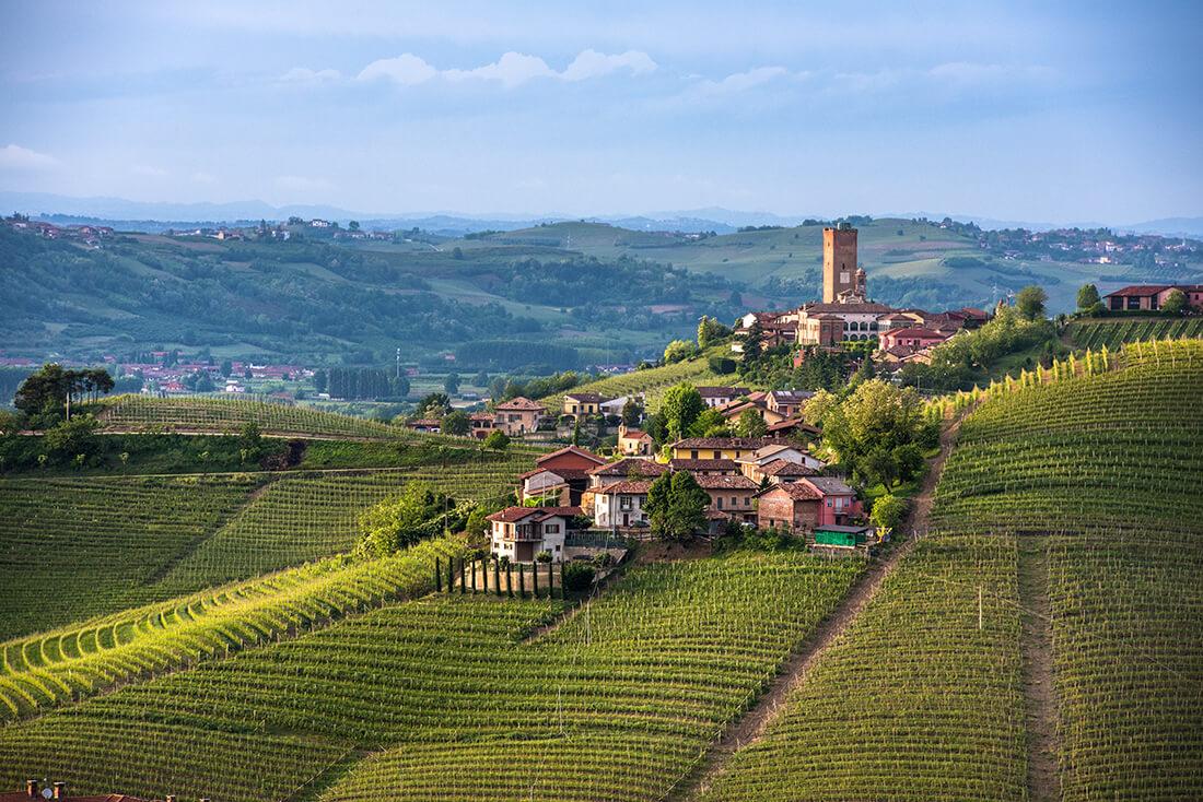 wijn-spijs-cultuur reis in Piëmonte